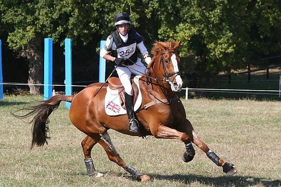 Equestrian Photography Canon Eos 7d 10d 80d Talk