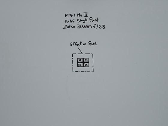 TS560x560~3625236.jpg