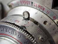 Canon EF-S 35mm F2.8 IS STM Macro sample gallery