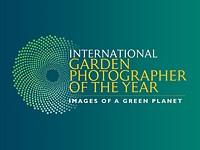 Slideshow: IGPOTY Macro Art Photo Contest Winners