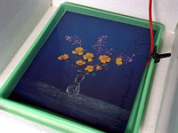"Video: Brendan Barry makes 20"" x 24"" wildflower image using camera obscura and color reversal process"