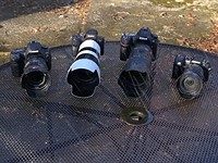 'Water Torture Test' compares Canon, Nikon, Sony and Olympus weather sealing
