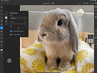 Adobe updates Photoshop on the web, adds improved selection tools, brings ACR to iPad & more