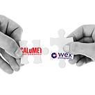 Calumet UK and Wex Photographic will officially merge tomorrow