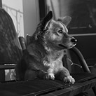 Leica M10 Monochrom sample gallery