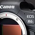 Canon EOS R6 initial review