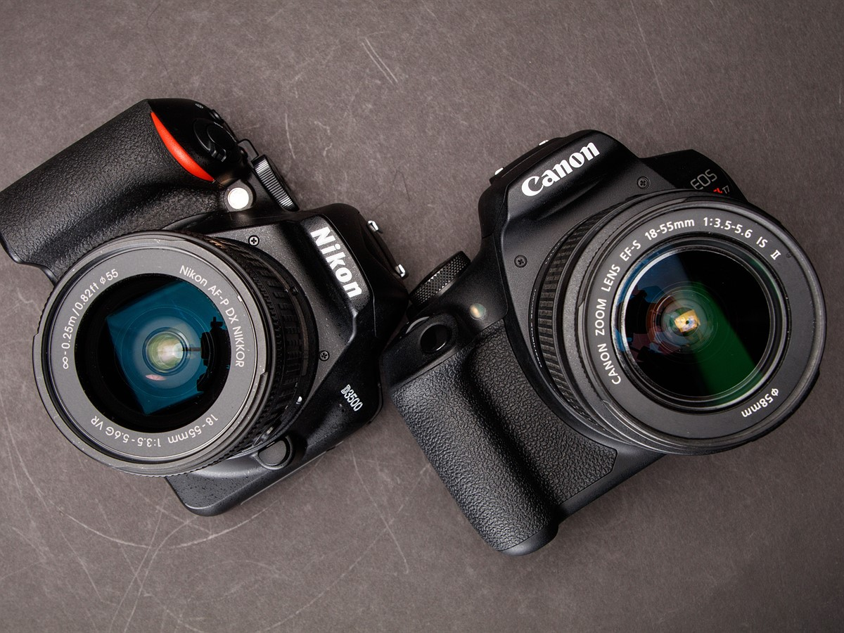 Nikon D3500 vs  Canon T7: Which is better?: Digital