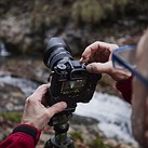 CIPA: DSLRs outperformed mirrorless in February, compact cameras still tanking
