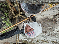 Behind the scenes with Nat Geo and 'The Last Honey Hunter'