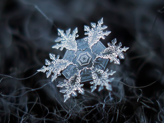 Homemade rig captures extreme macro shots of snowflakes