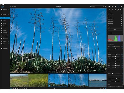 11 Photoshop alternatives for photographers at every level 8