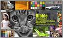 Bibble 2.99 - D1X support