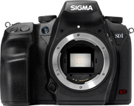 Sigma SD1 / SD1 Merrill In-depth Review