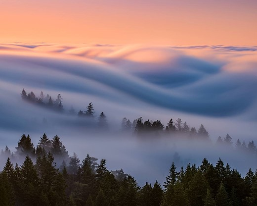Fog waves: photographer Nick Steinberg captures nature in motion 1