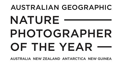 Slideshow: Australian Geographic Nature Photographer of the Year 2021 winners and finalists