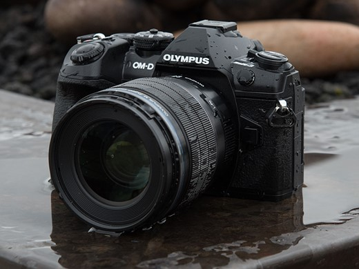 What's changed? Comparing the Olympus OM-D E-M1 and E-M1 II 9