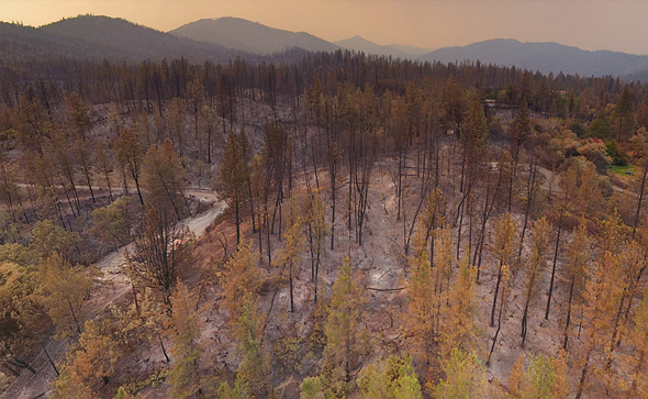 Aerial photos reveal California wildfire devastation