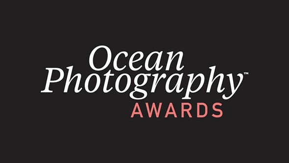 Winners and finalists of the 2020 Ocean Photographer of the Year awards