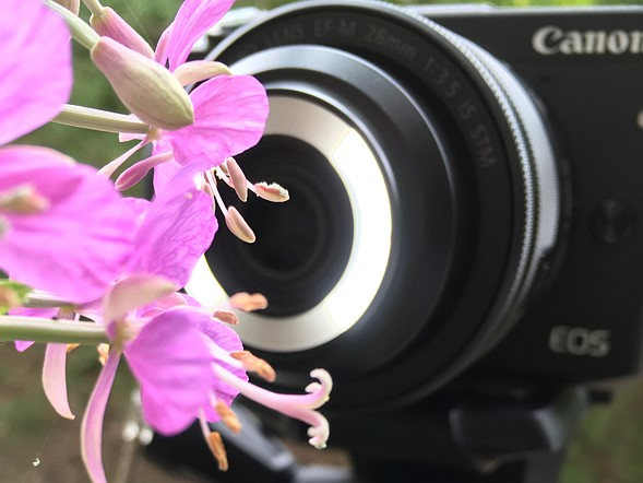 Hands-on review: Canon EF-M 28mm Macro