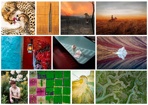 Sony World Photography Awards Open Competition 2020 winners and shortlisted images