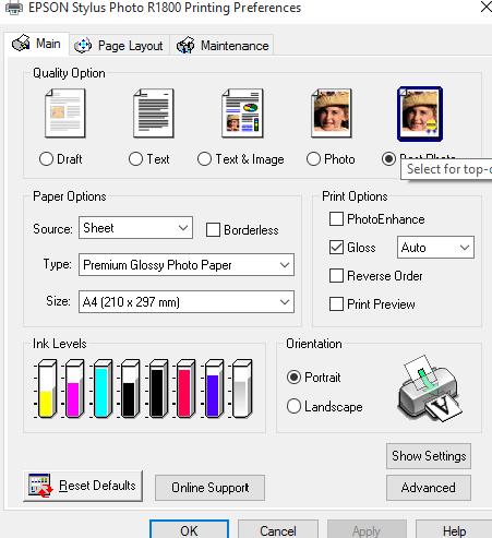 Epson R1800 UVA3 printer Doesnt Print: Printers and Printing