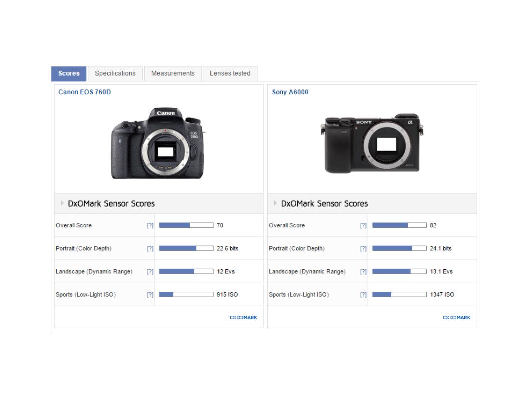 Sony a6300 or Canon 80D ?: Sony Alpha / NEX E-mount (APS-C) Talk ...