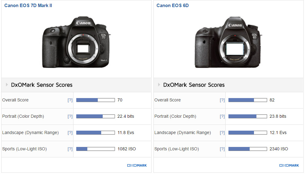 Backup options for dslr\'s with one memory card slot?: Beginners ...