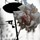 beespeckled