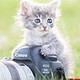 photography lover