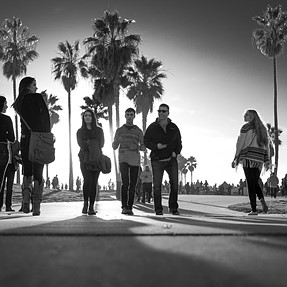 Palms And People