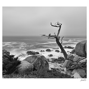 D810 and the Big Stopper