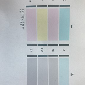 Pixma Pro Suddenly Started Printing very Blue!
