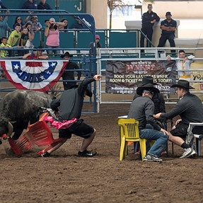 D500 Visits The Rodeo