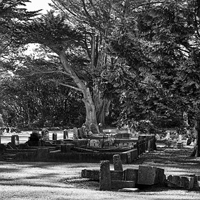 A Black & White walk through an old Cemetery - warning image rich