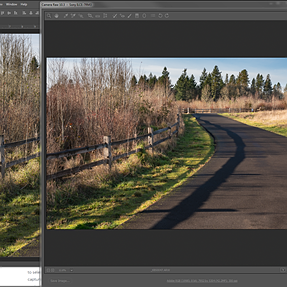Camera Raw update color doesn't match exported file