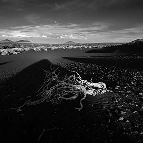 Arizona Highways Magazine - Photography Contest Winner