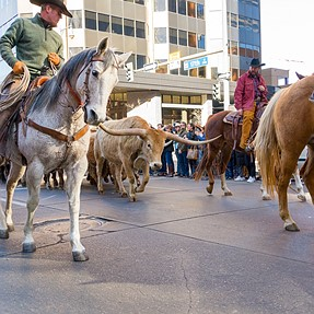 Western stock show parade - 2020