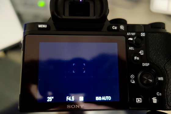 Sony A7 red pixel screen and viewfinder, not in resulting