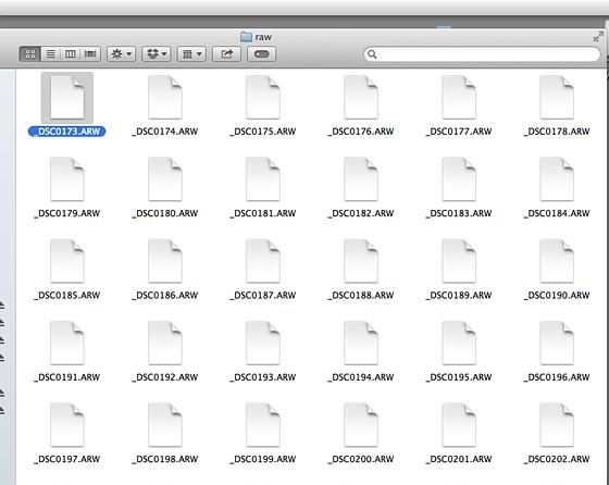 arw converter mac free