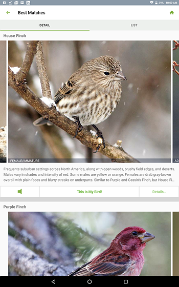 Cornell Lab of Ornithology Merlin bird id app Re: Birds