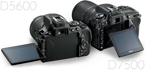Re: D5600 vs  D7500: Nikon DX SLR (D40-D90, D3000-D7500