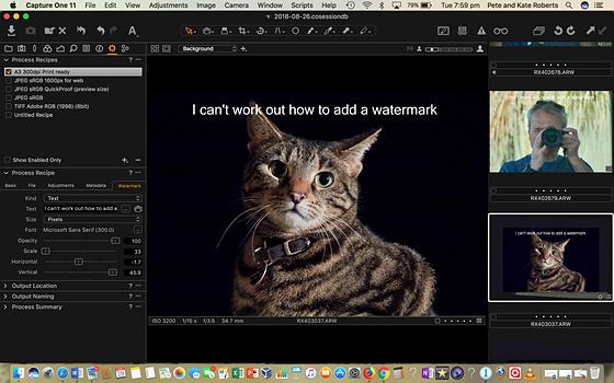 Capture one Watermark missing ?: Open Talk Forum: Digital