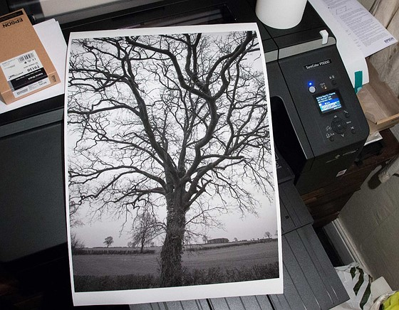 P800 ICC profiles for new Epson Fine Art papers: Printers
