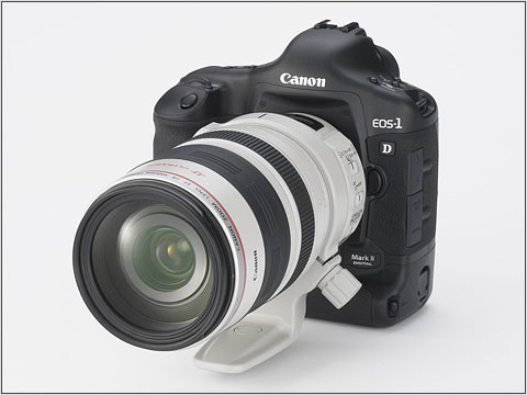Canon Ef 28 300 Mm F3 5 F5 6 L Is Usm Digital Photography Review