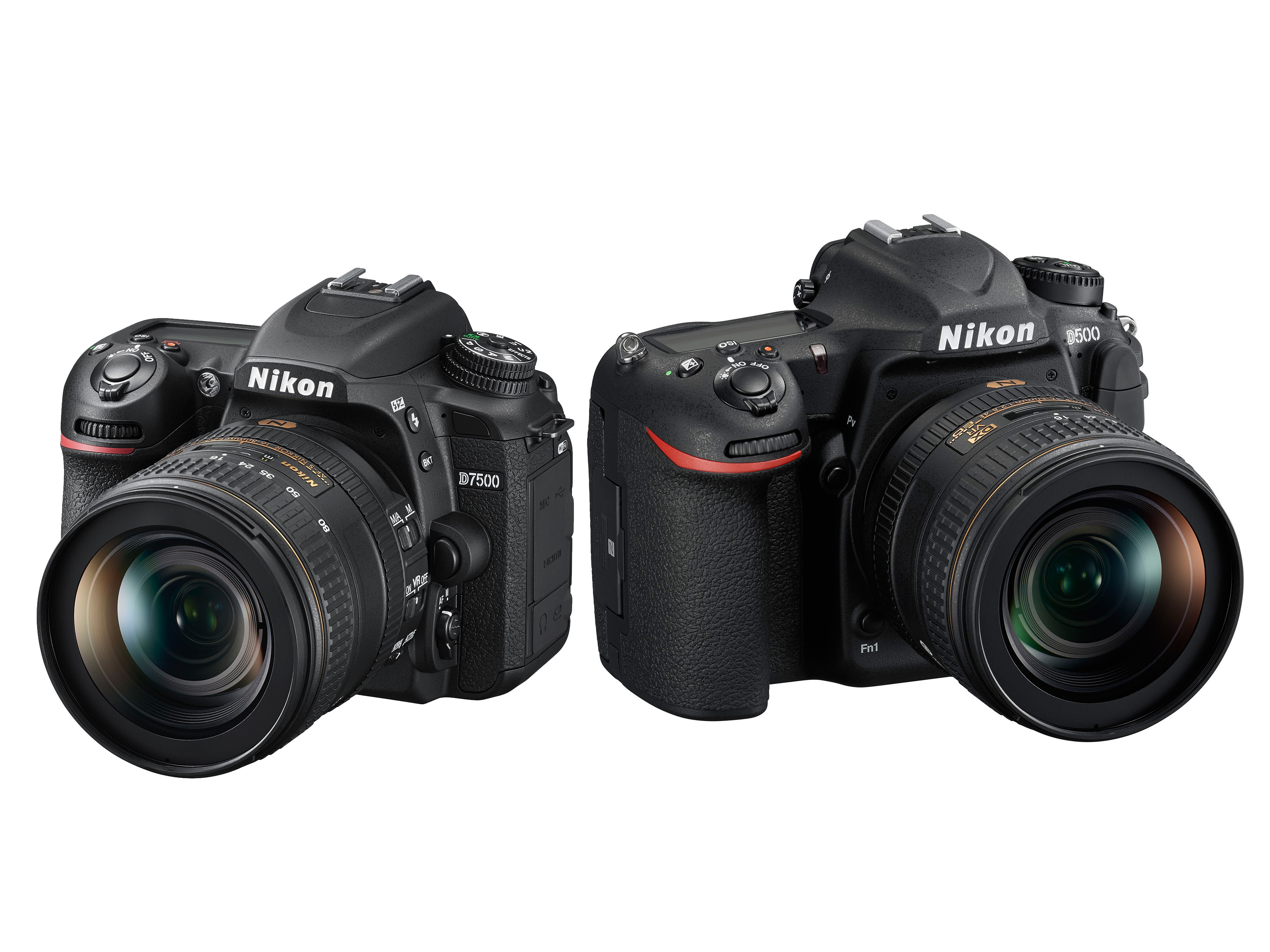 Nikon D500 versus D750 Which one is right for you Digital graphy Review