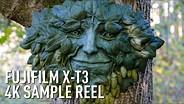 Fujifilm X-T3 Video Sample - 4K Eterna