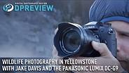 Wildlife photography in Yellowstone with Jake Davis and the Panasonic Lumix DC-G9