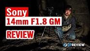 索尼14mm F1.8 GM回顾-天体摄影和更多!