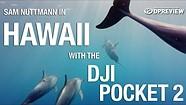 Sam Nuttmann在夏威夷用DJI Pocket 2相机拍摄